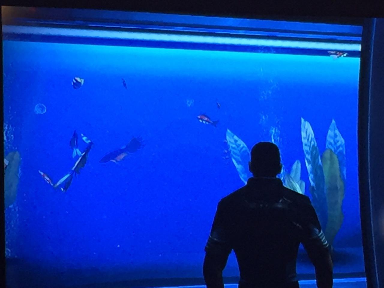 spacefish