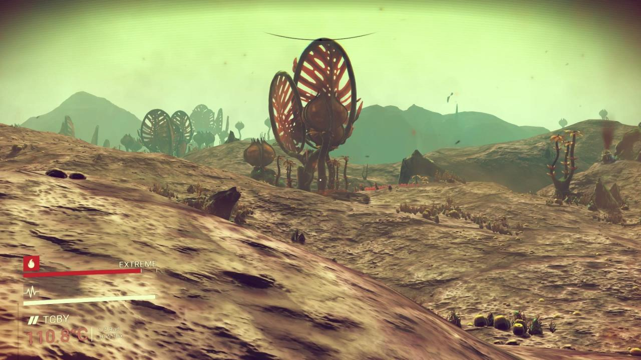 nms013